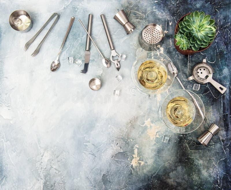 Bebida que faz a planta carnuda do champanhe do cocktail dos ingredientes das ferramentas foto de stock royalty free