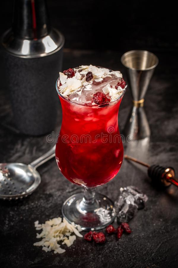 Bebida roja del cóctel fotos de archivo