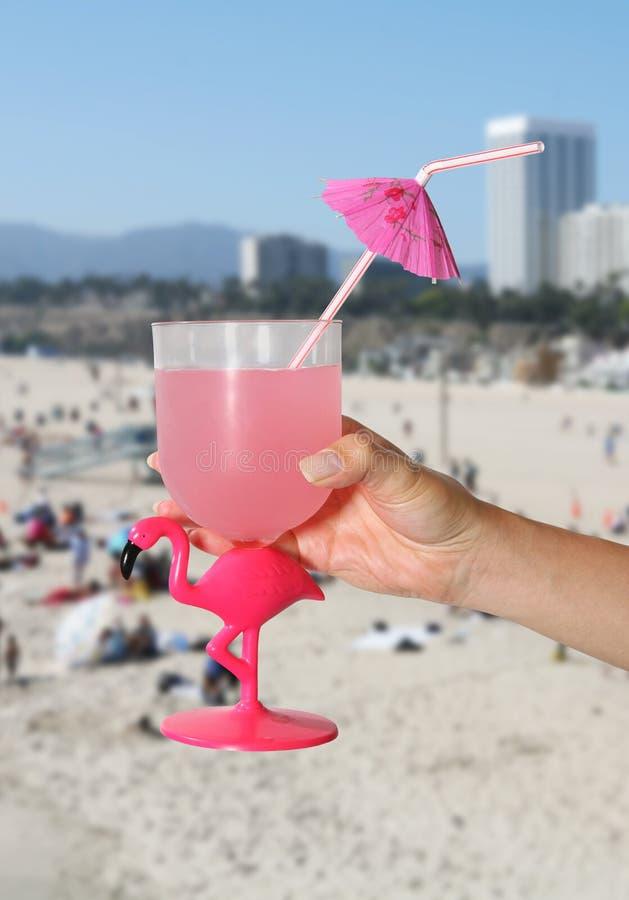 Bebida Tropical Fotos de Stock Royalty Free