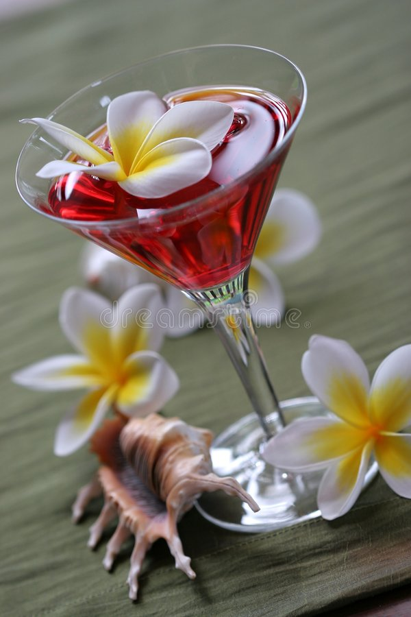 Bebida tropical del sacador del Plumeria imagenes de archivo