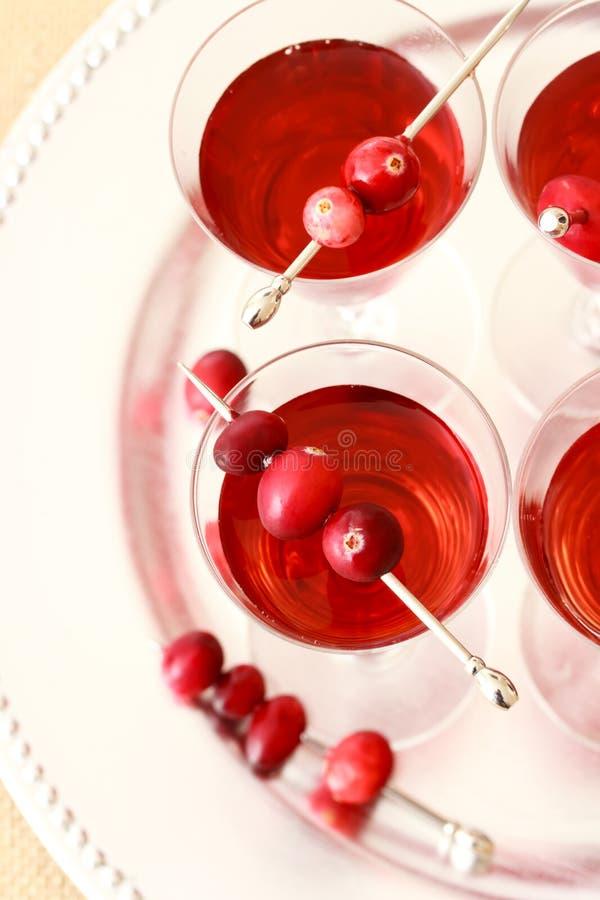 Bebidas de la baya fotografía de archivo libre de regalías