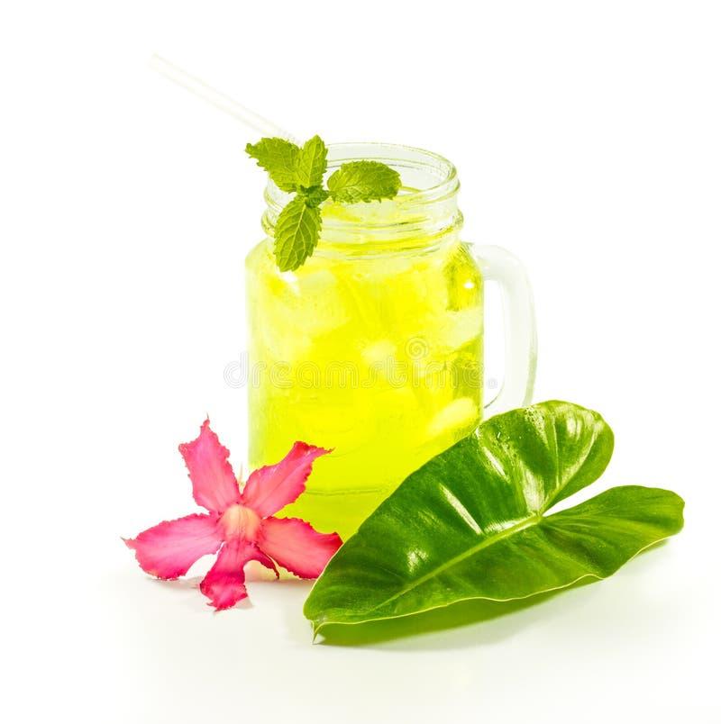 Bebidas de refrescamento do verão no frasco fotos de stock royalty free