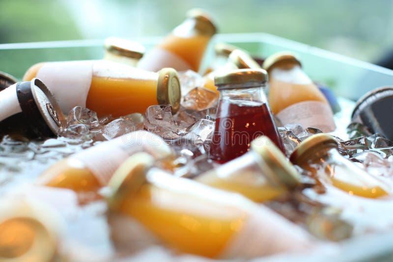 Bebidas Do Frio Imagem de Stock