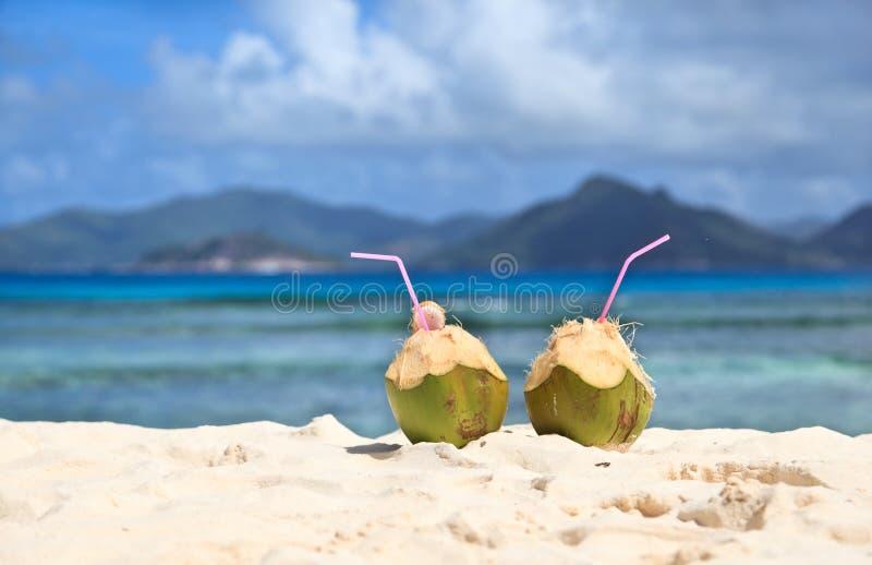 Bebidas en la playa tropical imagenes de archivo