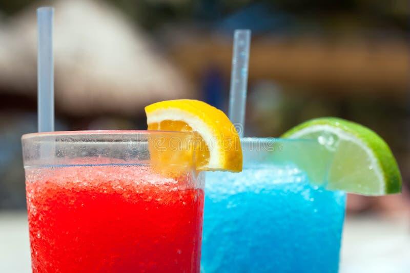Bebidas tropicais foto de stock