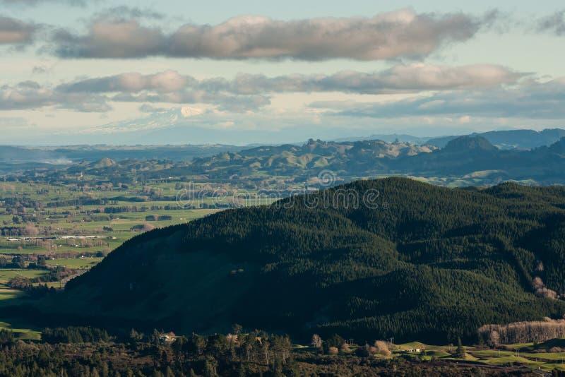 Beboste vulkanen in de vulkanische streek van Taupo stock afbeeldingen