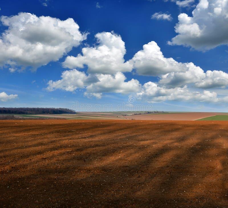 bebouwbaar agrarisch landschap van de lente royalty-vrije stock afbeeldingen