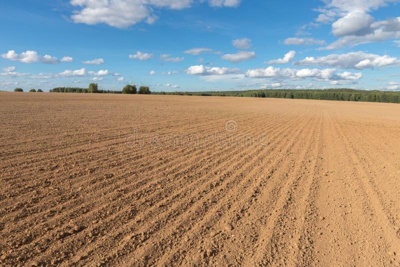 Bebouwbaar gebiedslandbouwbedrijf en blauwe hemel royalty-vrije stock foto