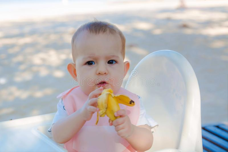 A baby eats a banana herself sitting on a high white children`s chair on the sandy beach stock image