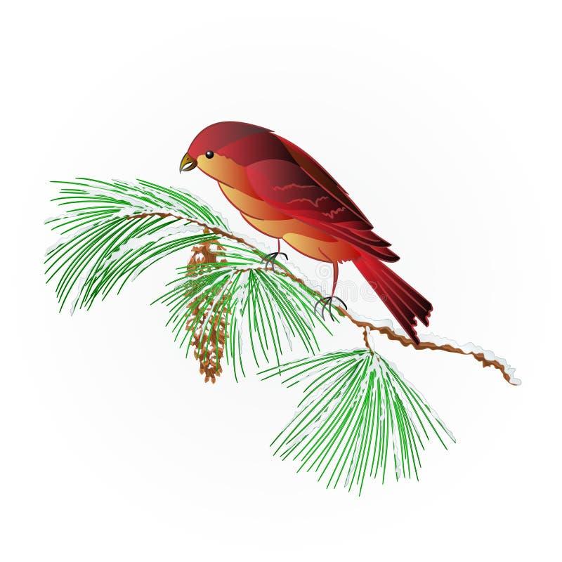 Bec croisé d'oiseau sur un vecteur neigeux de branche de pin illustration libre de droits