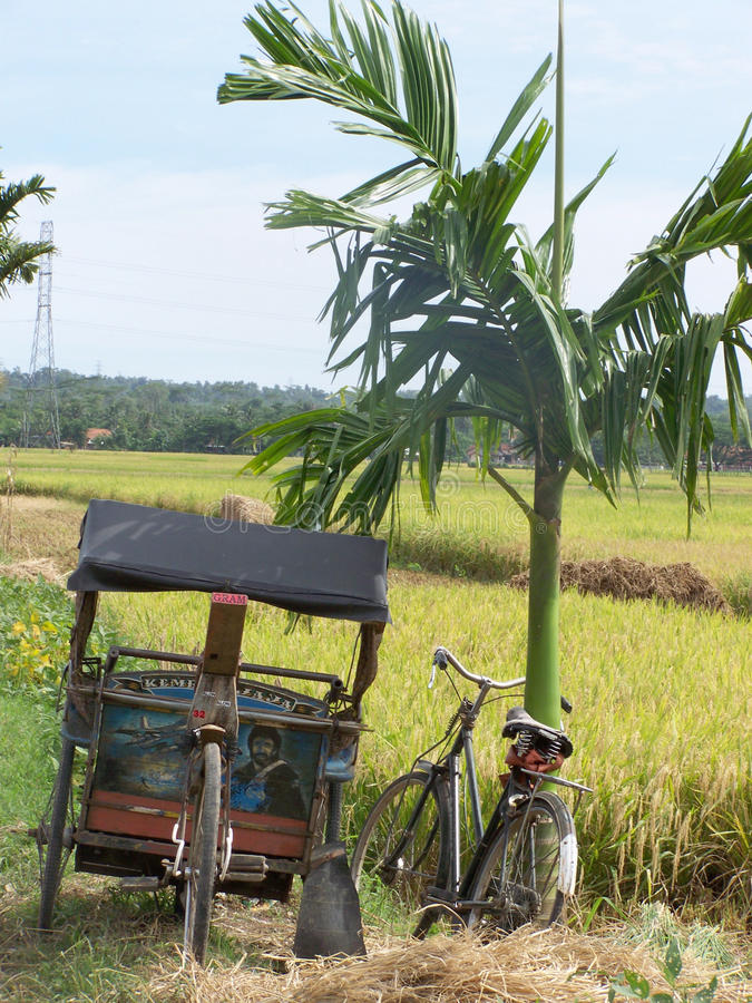 Becak and Sepeda royalty free stock photos