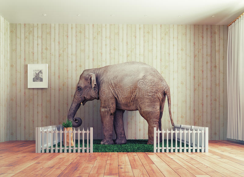 Becerro del elefante - animal doméstico stock de ilustración
