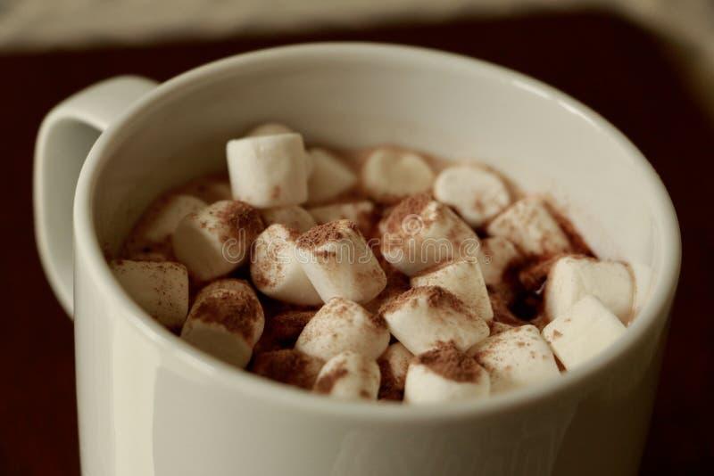 Becher Kakao mit Minieibischen stockfotografie