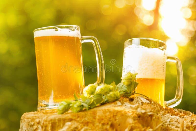 Becher mit Bier auf natürlichem Hintergrund lizenzfreies stockbild