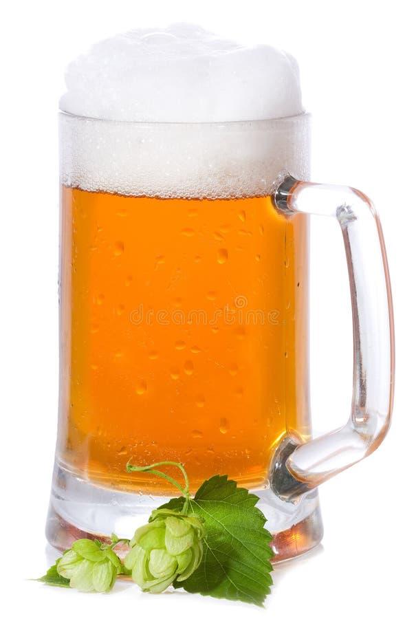 Becher mit Bier und Hopfen lizenzfreies stockbild