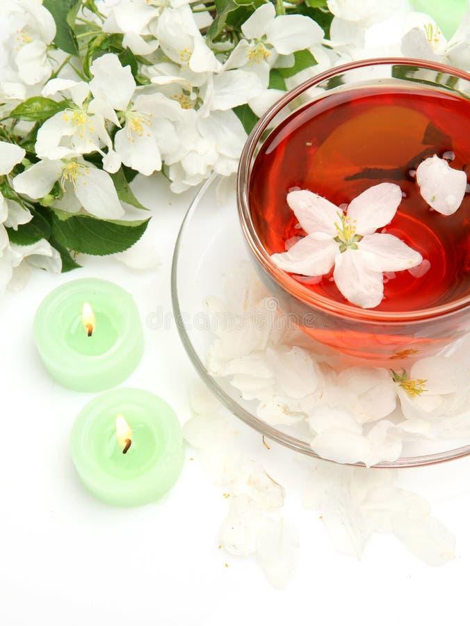 Becher mit Tee und Blumen stockbild