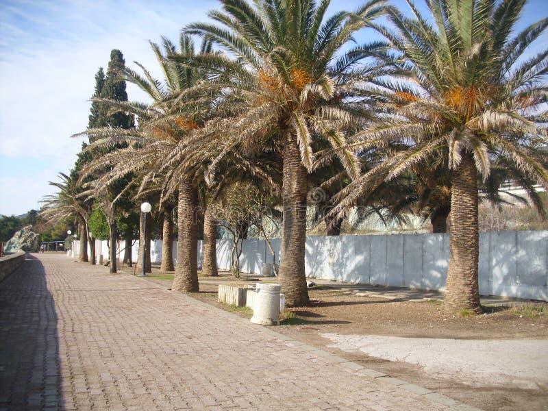 Becici Budva Montenegro el coste fotografía de archivo libre de regalías