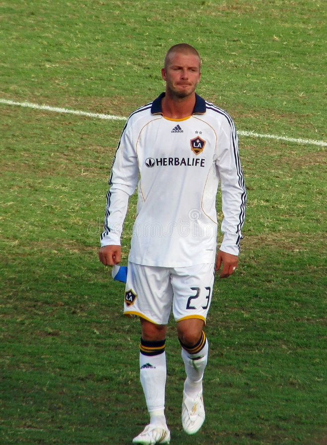 Beckham sae do campo imagens de stock royalty free