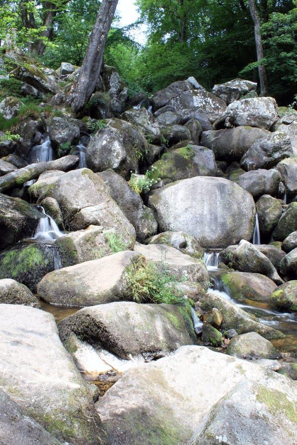 Becky Falls In Dartmoor photos libres de droits