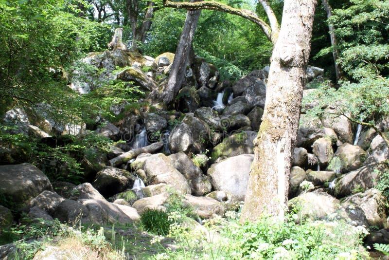 Becky Falls In Dartmoor images stock