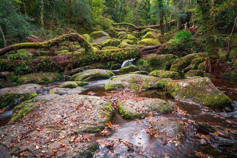 Becky Falls in het Nationale Park van Dartmoor royalty-vrije stock afbeeldingen