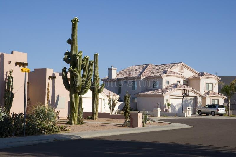 Beco sem saída do Arizona fotografia de stock