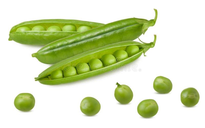 becs d'ancre d'isolement Groupe de cosse ouverte de pois crus frais verts avec des haricots d'isolement sur le fond blanc images libres de droits