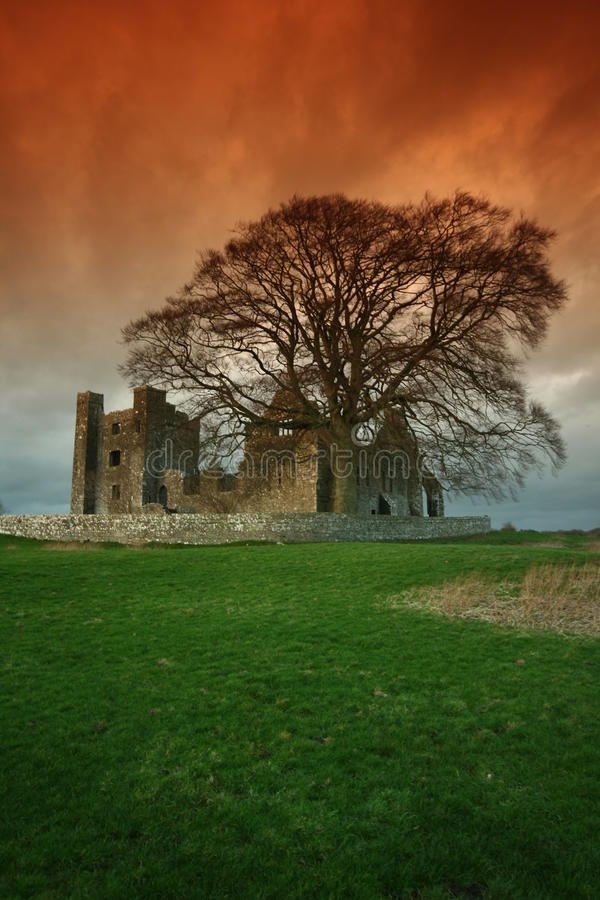 Download Bective Abbey stock photo. Image of abbey, church, evening - 11970336