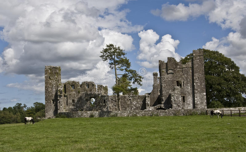 Download Bective Abbey stock image. Image of european, monks, architecture - 26063563