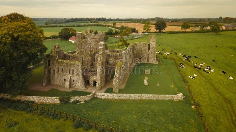 bective abbey klippning ståndsmässiga Meath ireland arkivbild