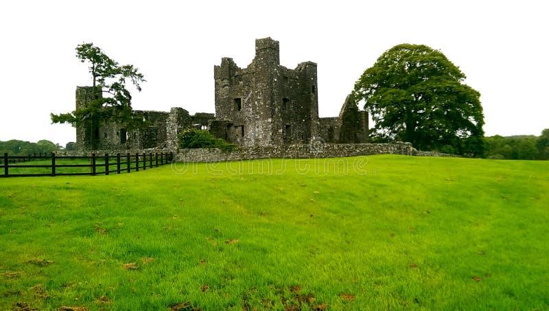 Bective abbotskloster, Irland royaltyfria bilder