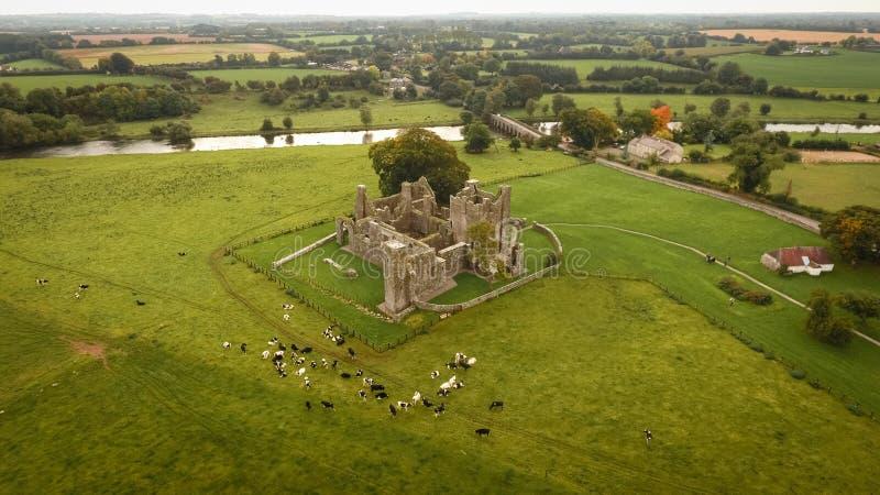 Bective abbotskloster och flod Boyne klippning ståndsmässiga Meath ireland arkivfoton