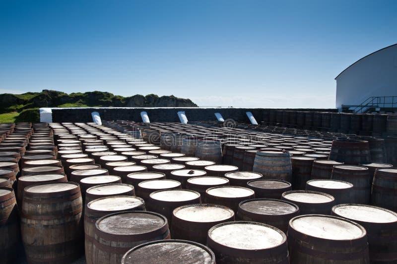 beczkuje whisky fotografia stock
