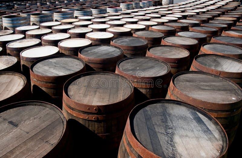 beczkuje whisky zdjęcie royalty free
