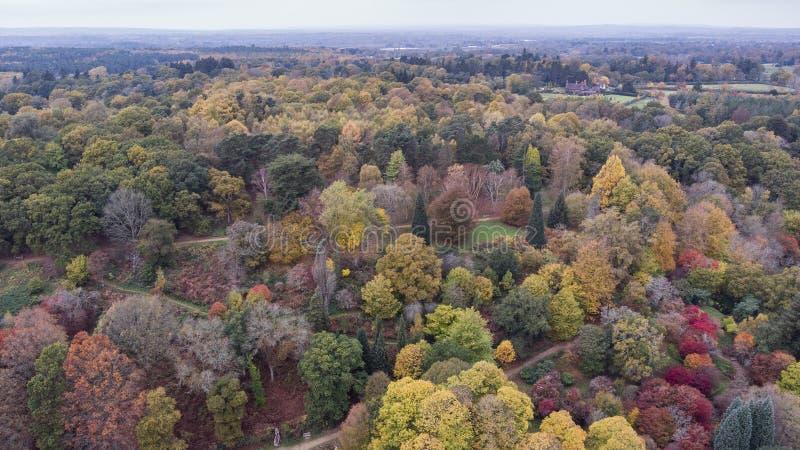 Bedöva flyg- surrlandskapbild av att bedöva färgrikt vibrerande Autumn Fall English bygdlandskap arkivfoto
