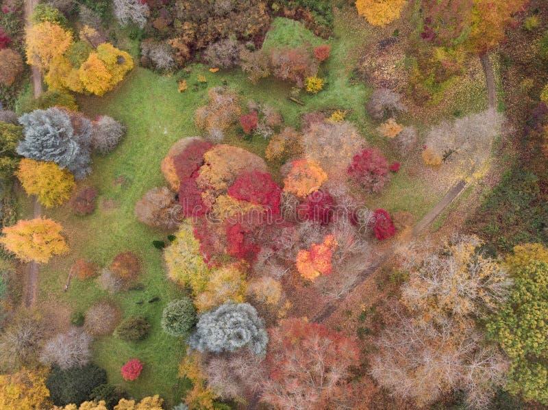 Bedöva flyg- surrlandskapbild av att bedöva färgrikt vibrerande Autumn Fall English bygdlandskap royaltyfri foto