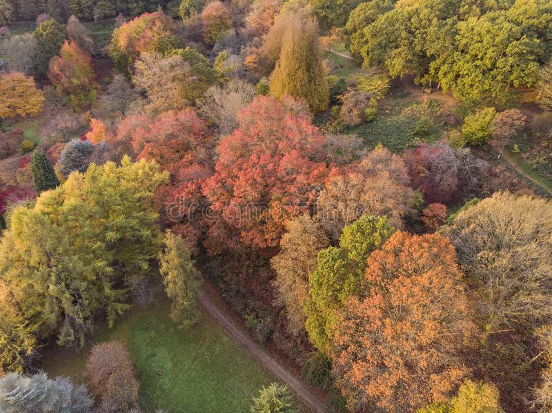 Bedöva flyg- surrlandskapbild av att bedöva färgrikt vibrerande Autumn Fall English bygdlandskap arkivbilder