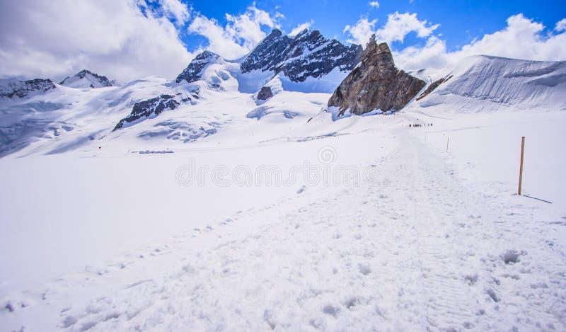 Bedöva härlig panoramautsikt av det Snowcapped landskapet för Bernese bergfjällängar i den Jungfrau regionen, Bernese Oberland, S fotografering för bildbyråer
