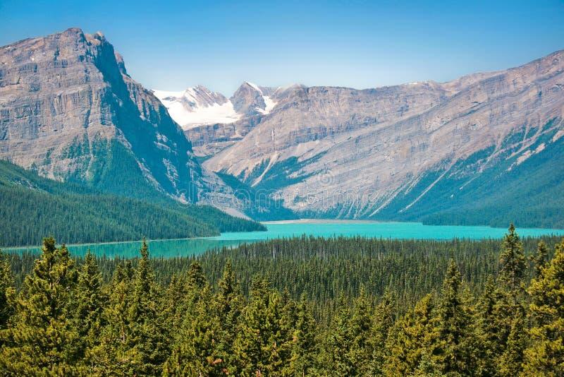 Bedöva liggande i Alberta, Kanada arkivbilder