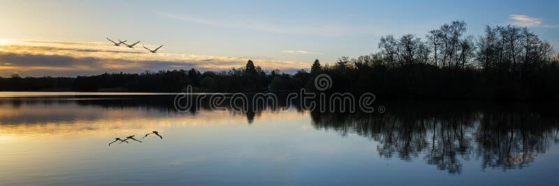 Bedöva vårsoluppgånglandskap över sjön med reflexioner och fotografering för bildbyråer