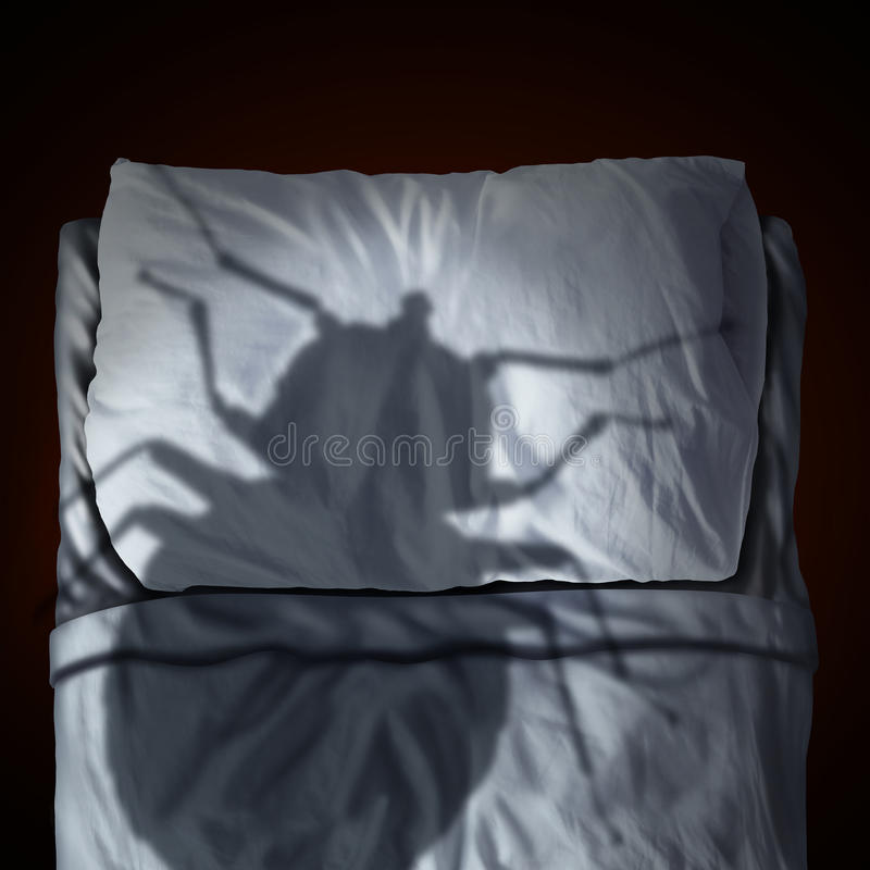 Free Bed Bug Fear Royalty Free Stock Photography - 69041197