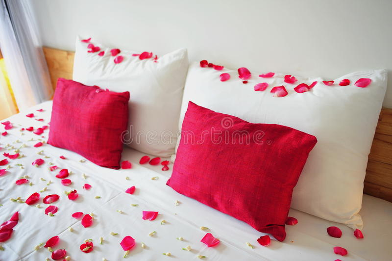 Bed fyllt med rose petals arkivbilder