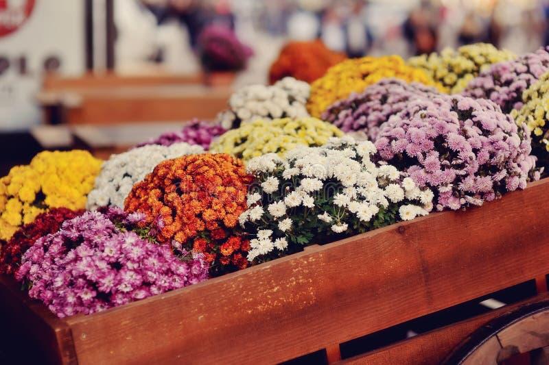 Bed met de herfstbloemen stock afbeeldingen