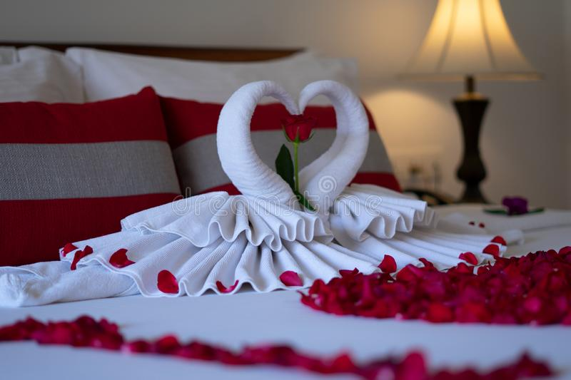 Bed room for honeymoon couple with rose for surprise. And romantic stock photos