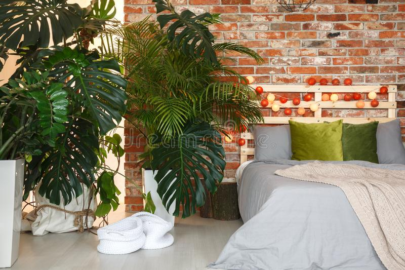 Bed under the palm trees stock images