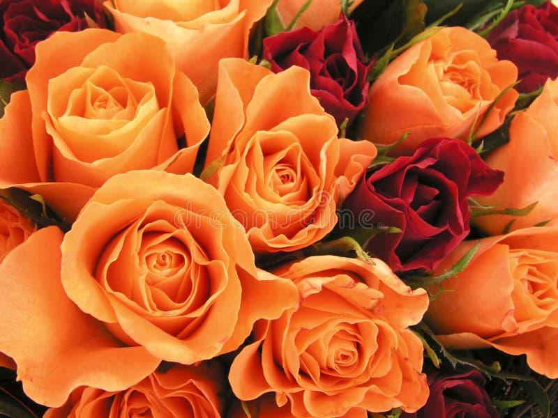 Bed van rozen I stock fotografie