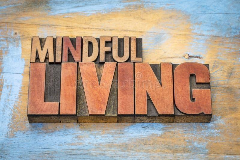 Bedachtzame het leven woordsamenvatting in houten type stock afbeeldingen