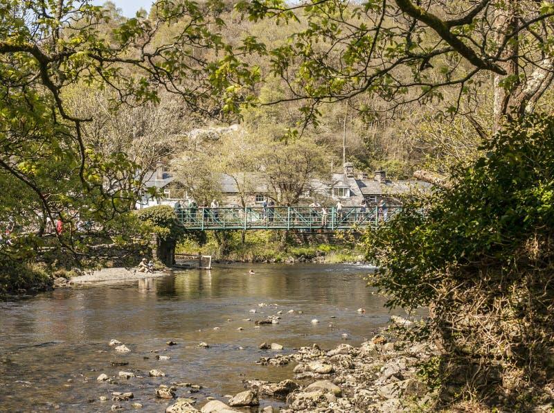 Beddgelert Wales, UK - en sikt av en ström royaltyfria foton