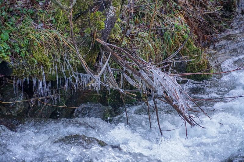 Bedecken Sie gefrorenes Wasser im Hintergrund Blätter treibt Fallwinterszene Whitewatereisniederlassungsmoosszenen-Wasserstrom mi stockbilder