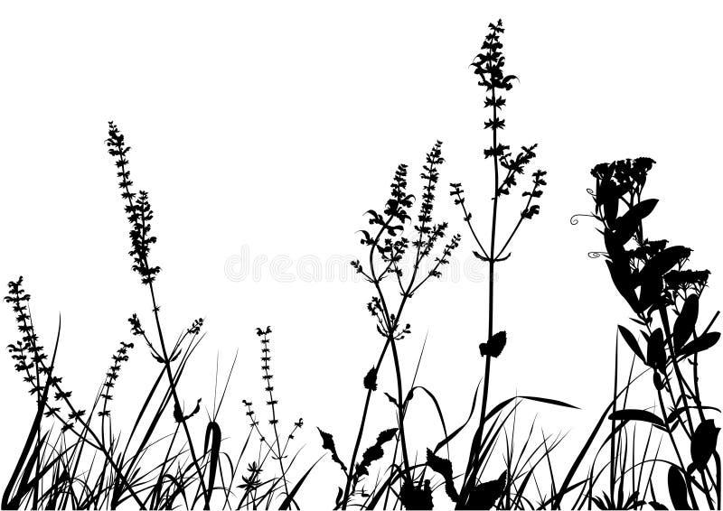 Bedecken Sie Schattenbild mit Gras stock abbildung